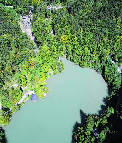 Wenn keine Maßnahmen getroffen werden, droht dem Staufensee die Verlandung.STD