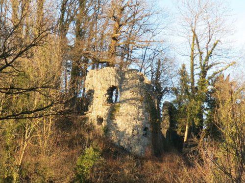 An der Ruine Neuburg in Koblach wird wieder gearbeitet. mäser