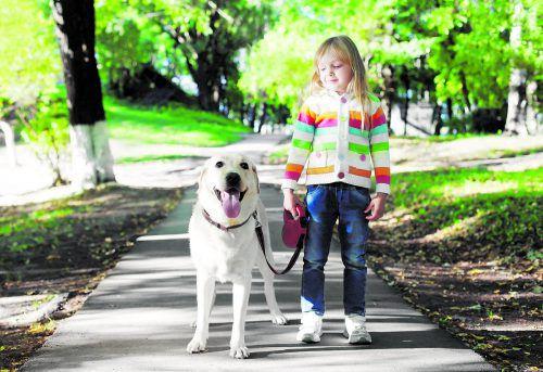 Auch Kinder müssen lernen, Rücksicht auf die Bedürfnisse des Hundes zu nehmen. fotolia