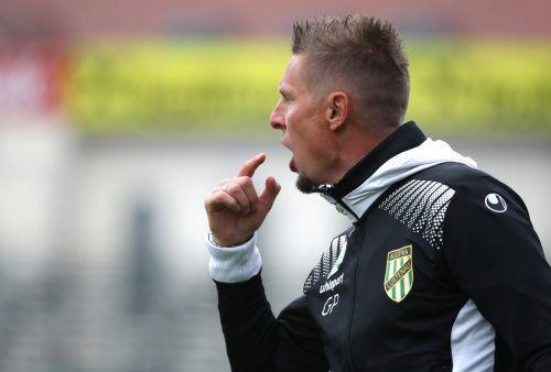 Austria-Lustenau-Trainer Gernot Plassnegger glaubt an das Potenzial seiner Spieler und ortet diesbezüglich noch enorme Entwicklungschancen.gepa