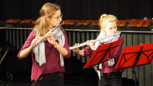 Beim Konzert zeigten die Musikschüler, dass auf ihren Instrumenten so ziemlich jeder Musikstil möglich ist – von klassischen Stücken bis hin zu zeitgenössischen Hits.Christof Egle