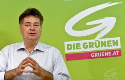 Der grüne Bundessprecher WernerKogler will sich beim Bundeskongress derPartei für die Spitzenkandidatur bei der EU-Wahl bewerben.APA