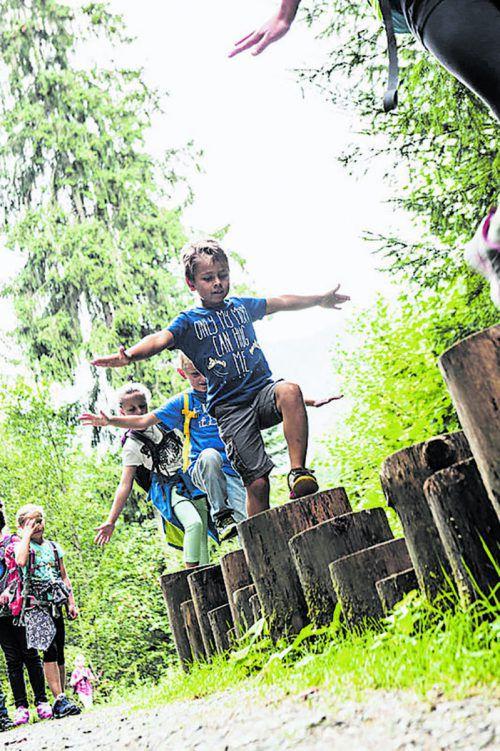 Der Weg führt am Wildbach Litz im Silbertal entlang. Langeweile stellt sich hier garantiert nicht ein.Montafon Tourismus/Patrick Säly
