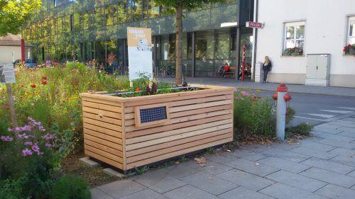 """Die Jugendwerkstätten haben ein Hochbeet für die Aktion """"Essbare Stadt Dornbirn"""" gebaut."""