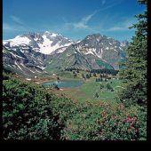 Hingucker auf 1654 Meter