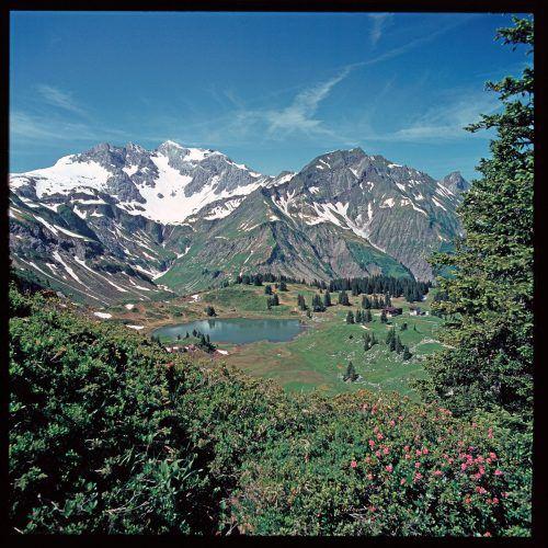 Durch eine Pollenanalyse aus dem Körbersee konnte das Institut für Botanik der Universität Innsbruck 2004 nachweisen, dass die Gegend bereits in der Bronzezeit besiedelt war und der Mensch seither die Flächen zur Beweidung nutzt.Helmut Klapper, Risch-Lau, Vorarlberger Landesbibliothek, Volare
