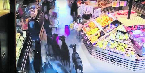 Eine Horde Schafe stürmte den Markt: Ein Video hielt die Szene fest. Kamera