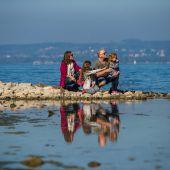 Naturschätze am Ufer des Bodensees