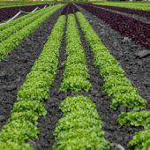 Naturschutzrat fordert Koordinationsstelle für Landwirte und Gastronomie