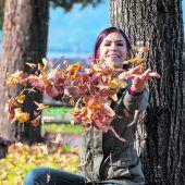 Herbstzauber bald vorbei