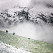 Zartes Weiß im Gebirge