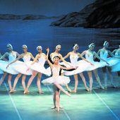 Die weißen Schwäne tanzen im Festspielhaus