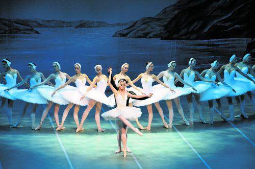 """Romantik pur: Das St. Petersburg Festival Ballet bringt """"Schwanensee"""" auf die Bühne des Festspielhauses.veranstalter"""