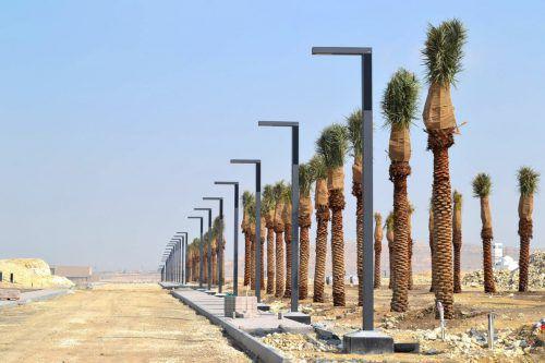 Photinus leuchtet auch im Wüstenstaat Bahrein mit Solarkraft. FA