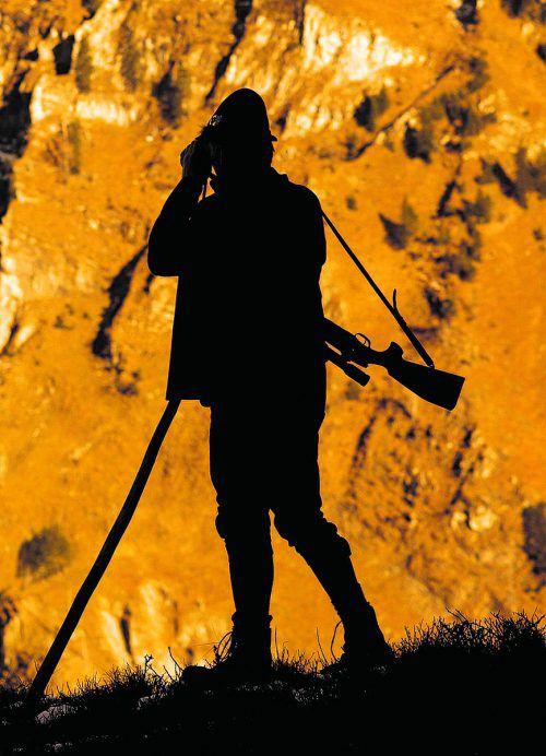 Zwei Steinböcke auf einen Streich: Das vermeintliche Jagdglück brachte den Laternser Bürgermeister gleich doppelt in die Bredouille.L. Berchtold
