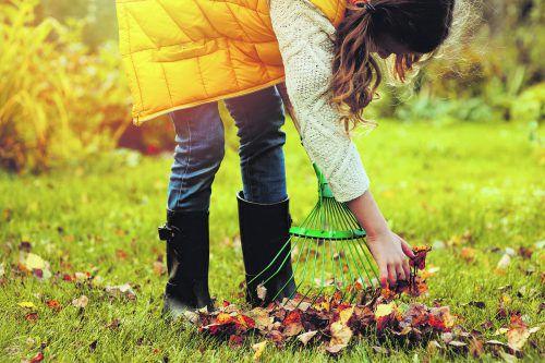 Beim Recyclinghof können Laub und Grünschnitt ordnungsgemäß entsorgt werden.