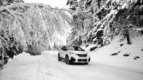 Der 3008er hat bei Peugeot die Design- und Technikrichtung für die SUV-Bau-reihen initiiert. Benzin- und Dieselmotoren sind sparsamkeitsorientiert.