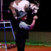 Der Circus Royal ist in Vorarlberg unterwegs