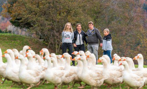 Die Bechters mit ihren Kindern Martin und Melanie und der Gänseschar. Auf dem Hof leben auch Kühe, Hühner und Perlhühner. VN/DS