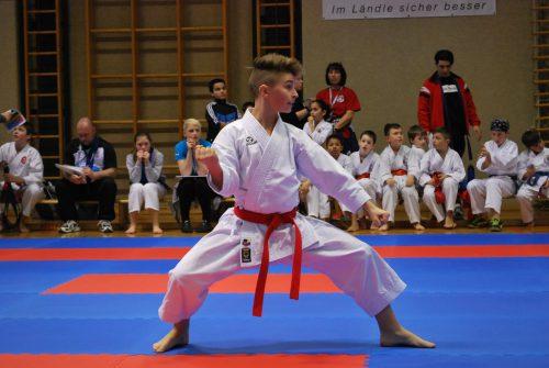 Die Karatesportler werden in Lustenau wieder alles geben. Rund 400 werden bei der Meisterschaft antreten.erh