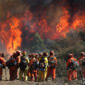 Tote bei Waldbränden in den USA