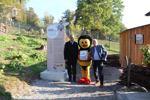 Direktor Richard Erne, Sumsi und Wildpark-Präsident Wolfgang Burtscher (v. l.).HE