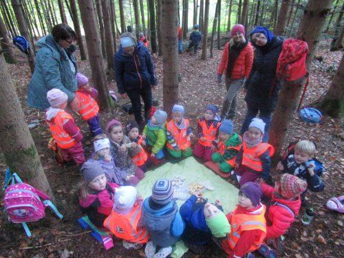 Eindrücke aus der Waldwoche des Kindergartens Gehren.Kindergarten Gehren