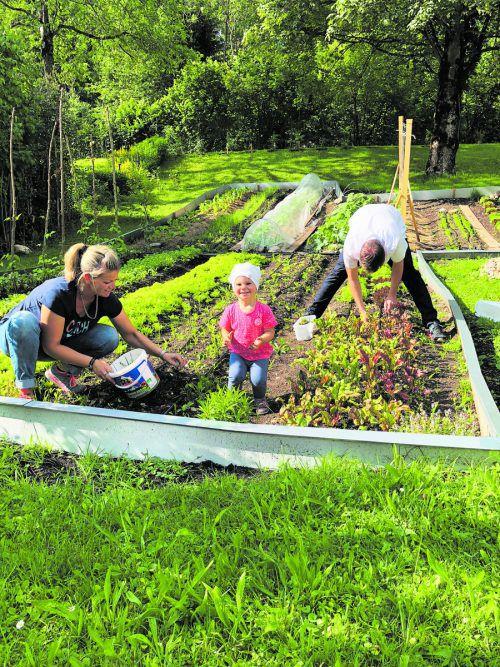 Fleißig u. a. im eigenen Gemüsegarten: Familie Emanuel Moosbrugger vom Biohotel Schwanen in Bizau.
