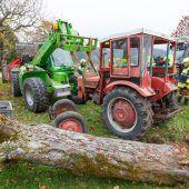Traktor gegen Baum
