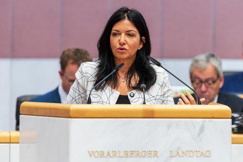 """""""Wir haben einen Vizekanzler Strache, der Klimawandel nicht einmal buchstabieren kann.""""Manuela Auer, SPAbgeordnete in der Aktuellen Stunde zum Thema Klimaschutz im Landtag"""
