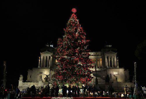 60.000 kleine Lichter brennen an Roms Weihnachtstanne. ap