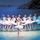 Ballett-Schwäne tanzen im Festspielhaus