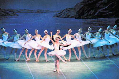 """Am Donnerstag, 3. Jänner 2019, gastiert das St. Petersburg Festival Ballet mit """"Schwanensee"""" im Festspielhaus in Bregenz. veranstalter"""