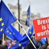 DUP-Abgeordnete gegen Brexit-Deal