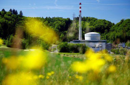Das AKW Mühleberg liegt rund 350 Kilometer von Vorarlberg entfernt. Am 20. Dezember 2019 soll es vom Netz genommen werden. Reuters