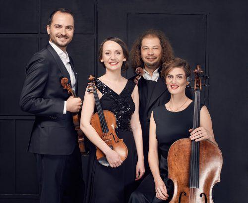 Ein besonderes Empfinden für Klangbalance zeichnet das Szymanowski Quartett aus. malgorzata popinigis