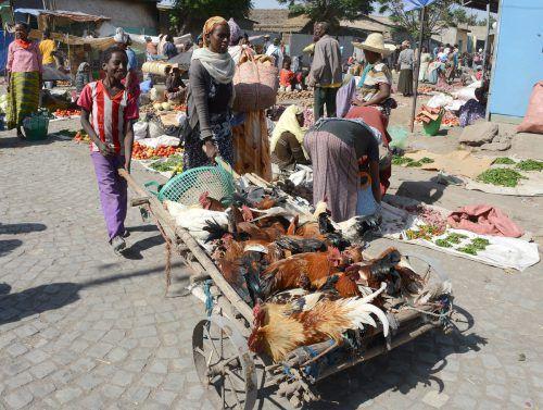 Eine Marktszene aus Äthiopien. inatura
