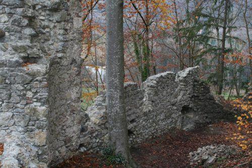 Für die Sanierung der Ruine Neuburg hat die Gemeinde Koblach 2019 70.000 Euro eingeplant. mäser
