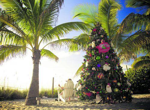 Für uns ein ungewöhnliches Bild, in Florida ganz normal: Weihnachtsbäume am Palmenstrand. Fort Myers & Sanibel (2)