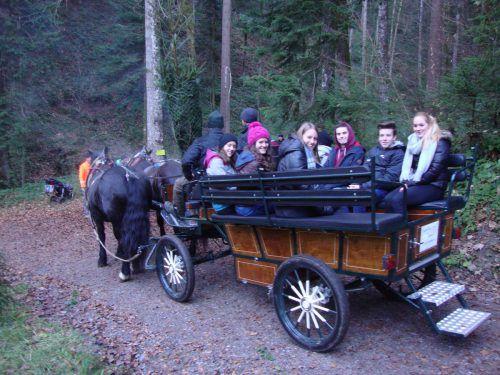 Mit dem Pferdeschlitten oder zu Fuß geht es in den Christbaumwald. me