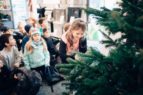 Mit ihren Christbäumen sorgen die Schüler für weihnachtliche Stimmung.