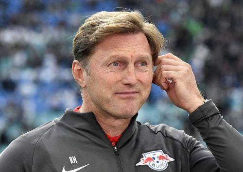 Ralph Hasenhüttl soll in Southampton einen Vertrag bis 2021 erhalten.gepa