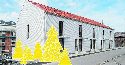 Smart, stylisch, leistbar und weihnachtlich präsentiert sich das RIVA-Townhouse beim Christbaum-Flash-Sale.foto: RIVA