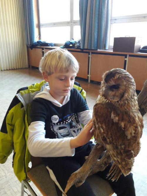 Wie groß manche Greifvögel sind, beeindruckte die Schüler.
