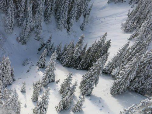 An der hier eingekreisten Stelle brach der Skifahrer durch den Neuschnee in das Bachbett. flugpolizei