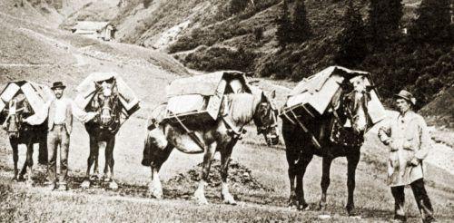 Auf einem alten Säumerpfad, einer sogenannten Mulatteria, brachten die Säumer ihre Waren zum Zielort. Nachlass Moosbrugger