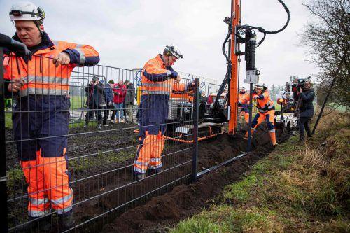 Das Bauwerk soll deutsche Wildschweine am Grenzübertritt hindern. AFP
