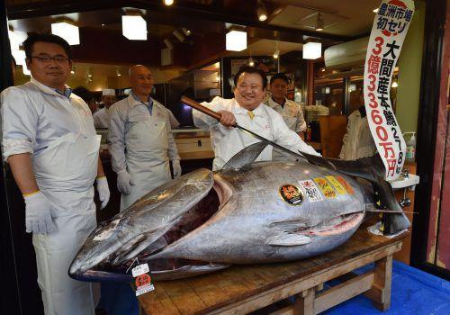 Der 278 Kilogramm schwere Thunfisch wurde für 2,7 Millionen Euro versteigert. AFP