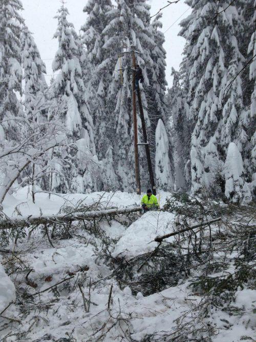 Die Arbeit im tiefverschneiten Wald ist anstrengend. Zudem müssen die benötigten Materialien oft Hunderte Meter herangetragen werden.
