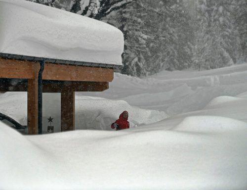 Die Bewohner in der Ramsau kämpfen gegen die Schneemassen. APA